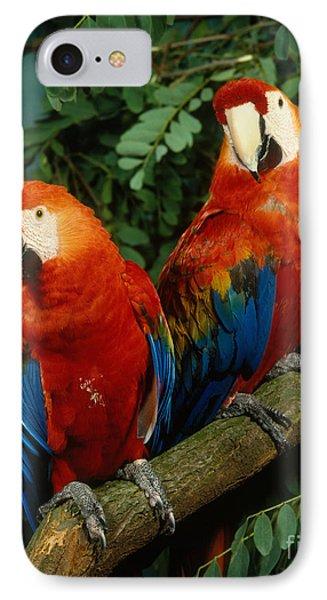 Scarlet Macaw Phone Case by Hans Reinhard