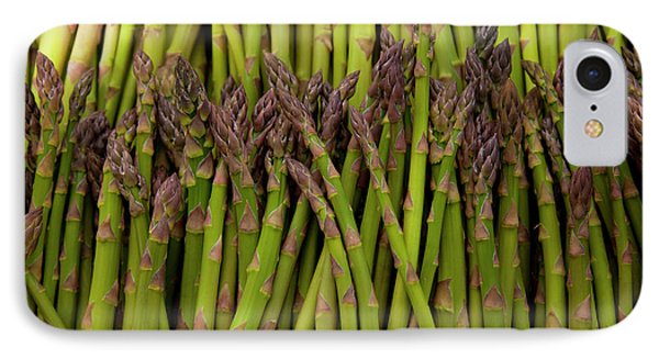 Scotts Asparagus Farm, Marlborough IPhone Case by Douglas Peebles