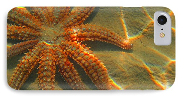 Sea Star IPhone Case