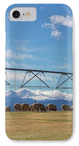 Sheep Grazing Under An Irrigation Boom IPhone Case