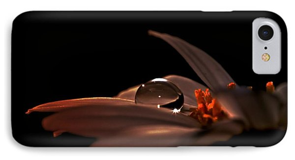 IPhone Case featuring the photograph Shine by Michaela Preston