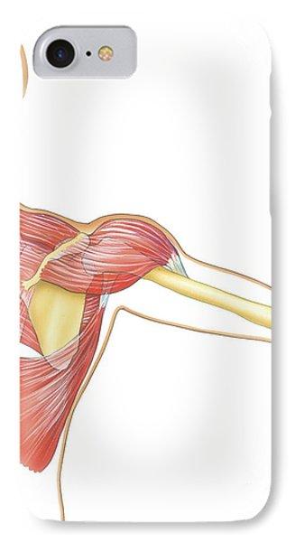 Shoulder Joint Movement, Artwork IPhone Case by Bo Veisland