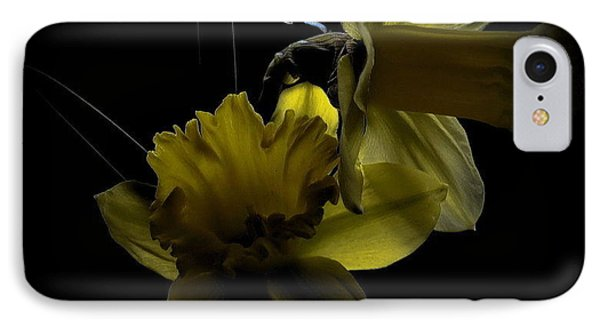 Silent Light IPhone Case by Marija Djedovic