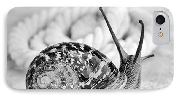 Snail IPhone Case by Nailia Schwarz