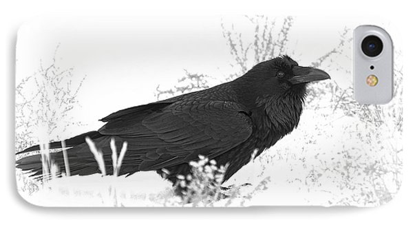 Snow Raven IPhone Case by Britt Runyon