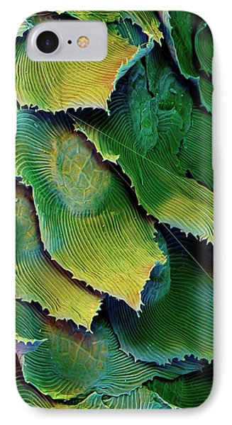 Spanish Moss Leaves IPhone Case by Stefan Diller