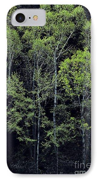 Spring Lights IPhone Case by Alan L Graham
