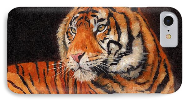 Sumatran Tiger  IPhone Case by David Stribbling