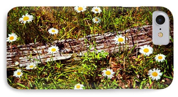 Summer Flowers On The Blue Ridge Parkway 7653 Phone Case by Dan Carmichael