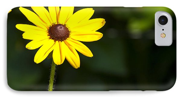 Sun Drenched IPhone Case