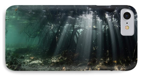 Sunlight Shines Into A Blue Water IPhone Case by Ethan Daniels