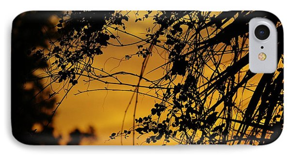 Sunset Through The Trees IPhone Case