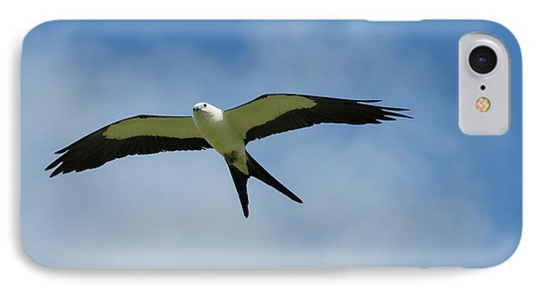 Swallow-tailed Kite In Flight IPhone 7 Case