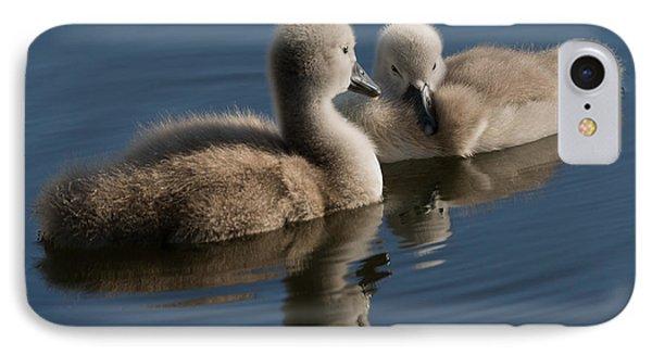 Swan Babies IPhone Case by Michael Mogensen