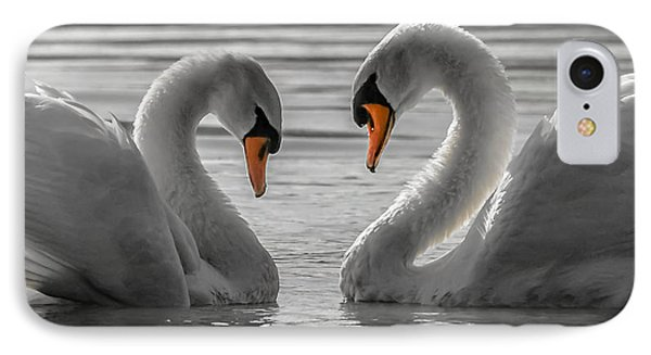 IPhone Case featuring the photograph Swan Love 2 by Brian Stevens