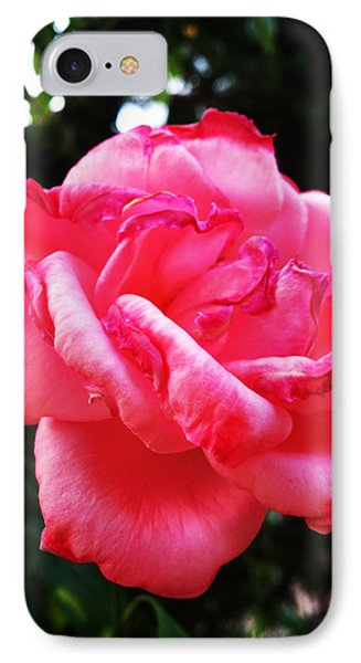 Tenderness IPhone Case by Lucy D