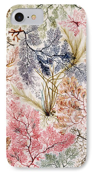Textile Design IPhone Case by William Kilburn