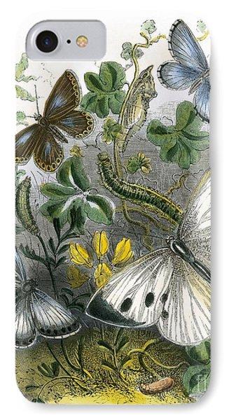 The Butterfly Vivarium IPhone Case