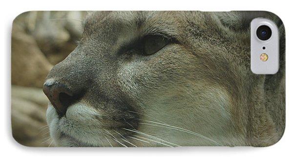 The Cougar 3 Phone Case by Ernie Echols