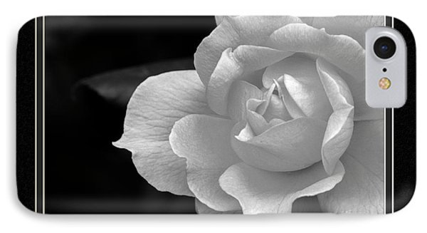 The Exquisiteness Of A Rose  IPhone Case by Charles Feagans