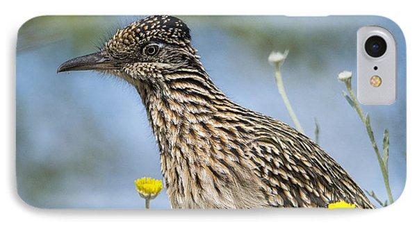 The Greater Roadrunner  IPhone 7 Case by Saija  Lehtonen