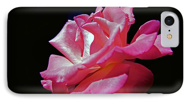 The Last Rose Of Summer IPhone Case by Andy Lawless