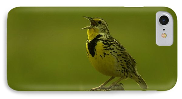The Meadowlark Sings IPhone Case