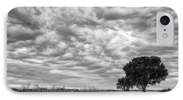 The Right Tree IPhone Case by Jon Glaser
