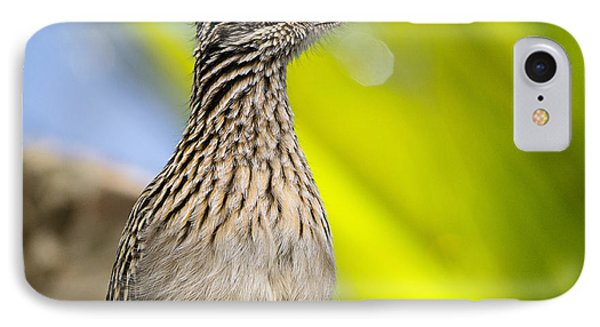 The Roadrunner  IPhone Case by Saija  Lehtonen