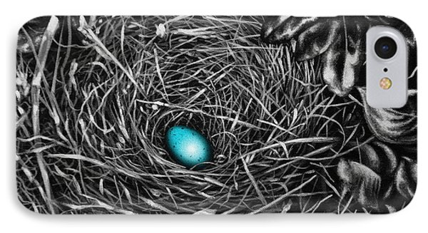 The Robin's Egg IPhone Case by Craig T Burgwardt