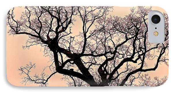 The Tree On Hobson Avenue IPhone Case by Rita Mueller