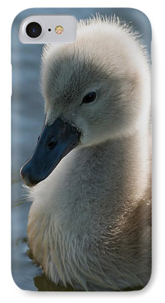 The Ugly Duckling IPhone Case by Michael Mogensen