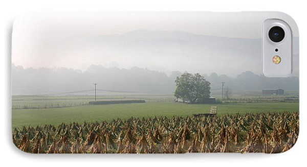 Tobacco In The Field IPhone Case by Annlynn Ward