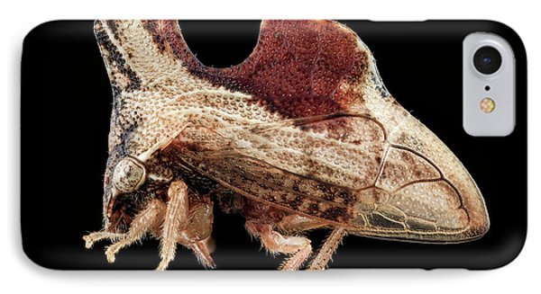 Treehopper IPhone Case by Us Geological Survey