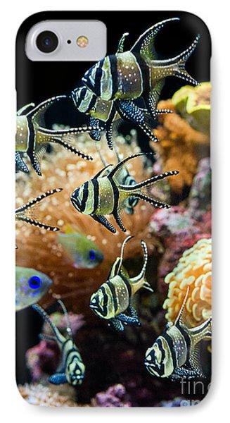 Tropical Wonderland - Banggai Cardinalfish Phone Case by Jamie Pham