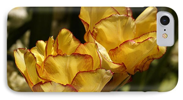 IPhone Case featuring the photograph Tulips by Inge Riis McDonald