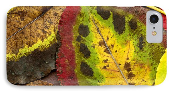 Turning Leaves Phone Case by Stephen Anderson