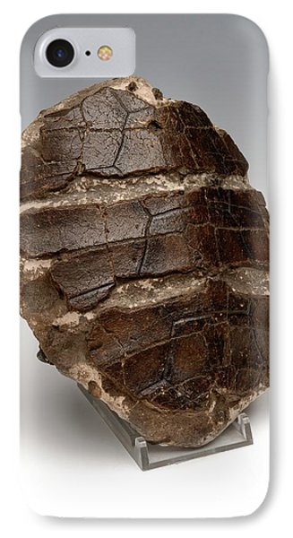 Turtle Shell Fossil IPhone Case