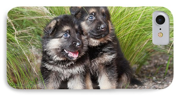 Two German Shepherd Puppies Sitting IPhone Case by Zandria Muench Beraldo