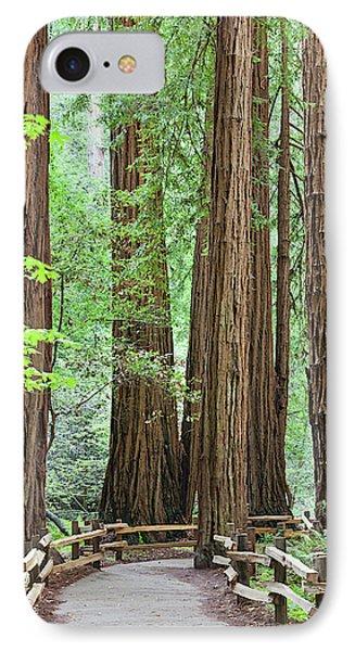 Usa, California Trail Through Muir IPhone Case