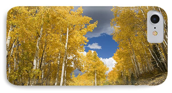 Usa, Colorado, Near Steamboat Springs IPhone Case by Ron Dahlquist