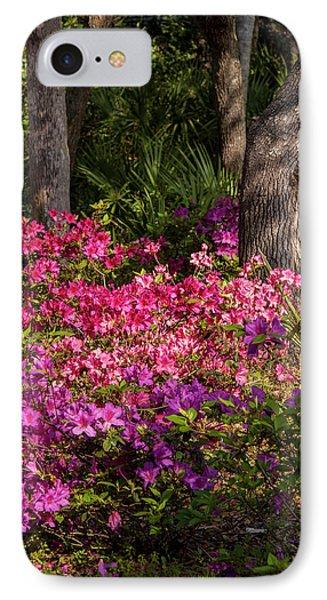 Usa, Florida, Edgewater, Edgewater IPhone Case by Lisa S. Engelbrecht