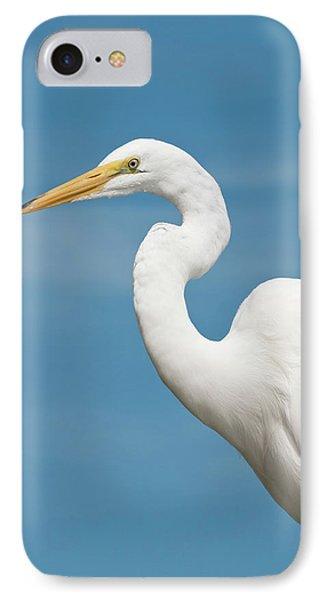 Usa, Florida Great Egret (ardea Alba IPhone Case by Michael Defreitas