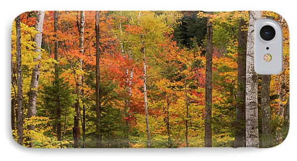 Usa, Maine, Bethel IPhone Case by Jaynes Gallery