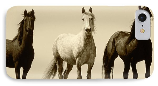 Usa, Wyoming, Young Wild Stallions IPhone Case by Scott T. Smith