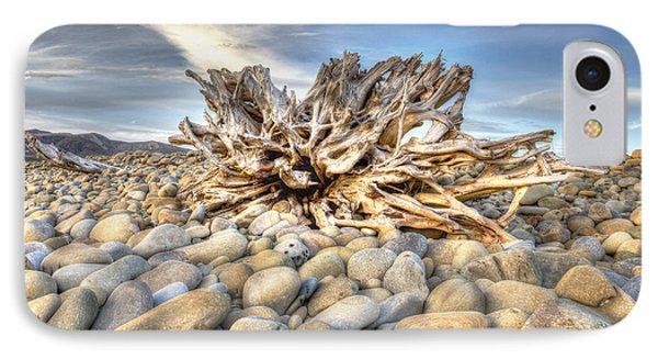 Ventura River Tree IPhone Case