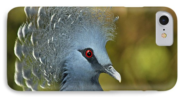 Victoria Crowned Pigeon IPhone Case