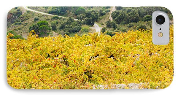 Vineyards, Collioure, Vermillion Coast IPhone Case by Panoramic Images