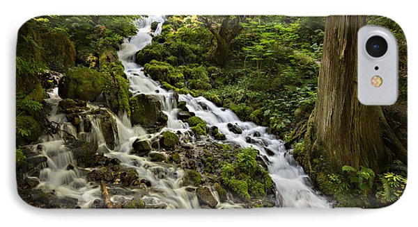 Wahkeena Creek IPhone Case by Mary Jo Allen