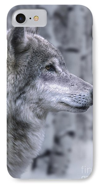 Watching And Waiting Phone Case by Sandra Bronstein